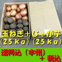 【送料無料 税込】北海道産 玉ねぎL大2.5kg + じゃが芋2L2.5kg(業務用 玉葱 タマネギ