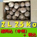 【送料無料 税込】北海道産じゃが芋 2L2.5kg(業務用 ...