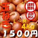【送料無料 税込】北海道産他 玉ねぎ L〜M4kg(業務用 玉葱 タマネギ たまねぎ じゃがいも ジャガイモ ポテト オニオン 常備野菜 箱売り 特用 セット)上越フルーツ