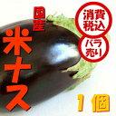 【税込 バラ売り】高知県産他 米ナス 1個(べいなす ベイナス なす なすび 焼ナス)上越フルーツ