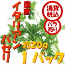 【税込 バラ売り】長野県産他 イタリアンパセリ 約20g 1パック(イタパセ ハーブ パセリ)上越フルーツ