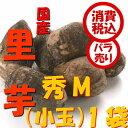 旬 野菜【税込 バラ売り】新潟五泉産 帛乙女里芋 秀M200g 1袋(さといもおとめ ごせん)上越フルーツ