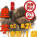 旬 野菜【税込 バラ売り】新潟五泉産 帛乙女里芋 セミ・長(...