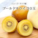 【max500円クーポンあり|マラソン】 【送料無料 箱売】 ニュージーランド産 ゴールドキウイフルーツ 30玉 1箱 | 業務用 ごーるど きうい 黄色 お取り寄せ 果物 フルーツ まとめ買い 新鮮果物 上越フルーツ