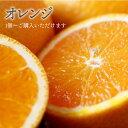 【max500円OFFクーポン|マラソン】 【税込 バラ売り】オーストラリア産他 オレンジ 1個(おれんじ みかん ミカン)上越フルーツ
