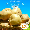 【送料無料】北海道産 男爵 じゃがいも LM 2.5kg 1箱 | じゃが芋 ジャガイモ 男爵芋 ポテト 箱 まとめ買い 野菜 根菜 業務用 上越フルーツ