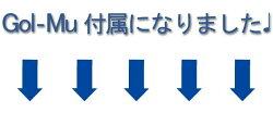 山田パター工房考案ドリーム54パター矯正練習機DREAM54※Gol-Mu(ゴルミュー)付属