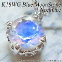 【上質ジュエリー】ホワイトゴールド (K18WG) ブルー