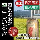 新米 30年産 お米【精米無料】【特別栽培米】平成30年産 新潟県産こしいぶき玄米30kg