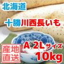 長いも(十勝川西長いも)北海道産長芋 A2Lサイズ 10kg...