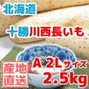 長いも(十勝川西長いも)北海道産長芋 A2Lサイズ 2.5k...