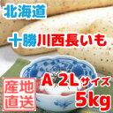 長いも(十勝川西長いも)北海道産長芋 A2Lサイズ 5kg(6本入)平成29年産