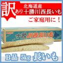長いも【訳あり】(十勝川西長いも)北海道産長芋 B2Lサイズ...