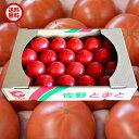 【送料無料】栃木県佐野市産トマト 1箱4キロ入り JA佐野出...