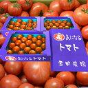 都内トマト専門店が認めた本格派フルーツトマト食べた事ある人し...