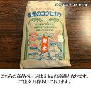 【R1年産新米】栃木県産コシヒカリ 玄米 10kg【送料無料】