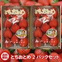 ★クール送料無料★栃木県産とちおとめ280グラムを2パックセ...