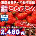 【クール送料無料】栃木県産とちおとめ280グラムを2パックセ...