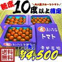 食フェスクーポンで10%引き【送料無料】高糖度10度以上確定レジェンド君ちゃんトマト