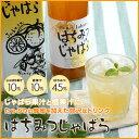 はちみつじゃばら500ml【じゃばら果汁10%】...