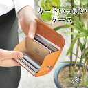 [285]A lot of cards case / men gap Dis card case leather / handmade real leather oil leather (Tochigi leather) card case credit card reward card holder gentleman thing wallet business leather [non-sleeve / bellows] brand HUKURO by JACA JACA [RCP]