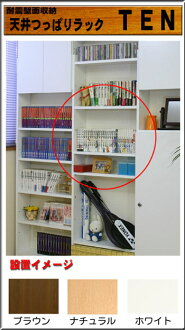 Depth 29 cm for consolidated shelves lower body for ★ points 10 times ★ 10P18Oct13