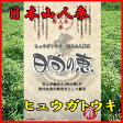 日本山人参(ヒュウガトウキ)お茶【送料無料】 日向の恵 飲みやすいお茶に! 健康茶 ドリンク 雑誌掲載 532P16Jul16