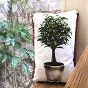 RoomClip商品情報 - デザイナーズクッション Foliage plant cushion (S) ふわふわクッション|オリジナル|腰当|国産|1人暮らし|新居お祝い|インテリア雑貨|かわいい|おしゃれ|雑貨|丸洗い|