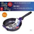 【送料無料】パール金属 驚きの軽さ ブルーダイヤモンドコートフライパン20cm HB−2016【生活雑貨館】