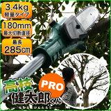 【代引き不可】ガーデンニング コードレス 充電式高枝切りチェーンソー YSGT-0513