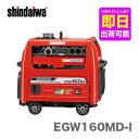 【数量限定】〈新ダイワ〉発電機 兼用 エンジン溶接機 EGW160M-I(本体のみタイプ)【代引不可 車上引き渡し品】