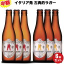 半額 ビール イタリア直輸入 クラフトビール 2種6本