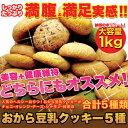 送料無料 おから豆乳クッキー 1kg(250g×4袋)【豆乳おからクッキー 割れクッキー 無選別クッキー お試し スイーツ】
