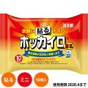 ホッカイロ 貼る ミニ 10個入 貼るタイプ 使い捨てカイロ (48)【のし 包装不可】
