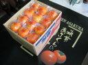 福岡県JA筑前あさくら冷蔵富有柿専用ダンボール箱10kg(36玉入)送料