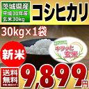 【新米】コシヒカリ キラッと玄米 30kg (茨城県産) 30年産 調整済玄米 送料無料 【通