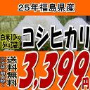 【数量限定】【送料無料】25年福島県産コシヒカリ白米10kg(5kg×2)【こしひかり】【米】【コメ】