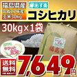 【平成27年】福島県産 調整済玄米 コシヒカリ 30kg 【あす楽_土曜営業】【送料無料】【家庭用精米機OK】【玄米食OK】