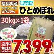 【平成27年】福島県産 調整済玄米 ひとめぼれ 30kg 【あす楽_土曜営業】【送料無料】【家庭用精米機OK】【玄米食OK】