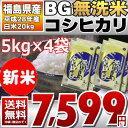 【BG無洗米】【20kgセット】 28年福島県産 白米 コシヒカリ 20kg(5kg×4)【送料無料】