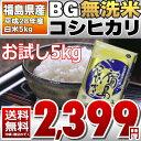 【BG無洗米】【お試し価格】 28年福島県産 白米 コシヒカリ 5kg(5kg×1袋) 【送料無料】