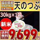 (新米)天のつぶ 30kg キラッと玄米 30kg 福島県 29年産 調製済玄米 送料無料【通常発送】