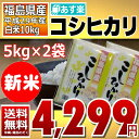 ((新米)) コシヒカリ 5kg×2袋 白米 10kg 福島...