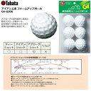 【ゴルフ】【トレーニング】タバタ アイアン上達 フォームアップボール GV-0306 【練習ボール】