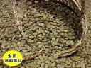 生豆コーヒーニカラグアSHG 800g:【RCP】【HLS_DU】