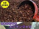 自家焙煎コーヒーキリマンジャロ 400g:【RCP】【HLS_DU】
