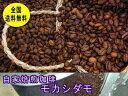 自家焙煎コーヒーモカシダモ 400g:【RCP】【HLS_DU】