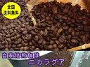 自家焙煎コーヒーニカラグア 400g:【RCP】【HLS_DU】【10P03Dec16】