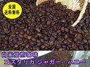 自家焙煎コーヒーコスタリカジャガー・ハニー 400g:【RCP】【HLS_DU】
