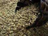 生豆コーヒーホンジュラスHG(10kg) :【RCP】【HLSDU】